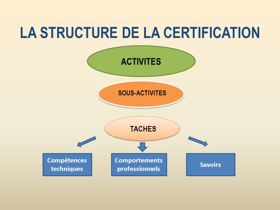 LA STRUCTURE DE LA CERTIFICATION