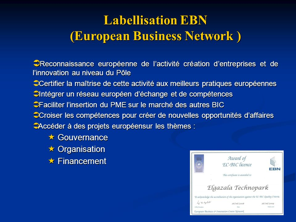 (European Business Network )