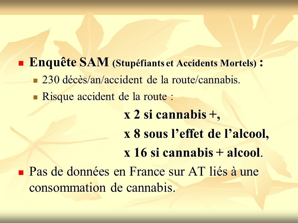 Enquête SAM (Stupéfiants et Accidents Mortels) :