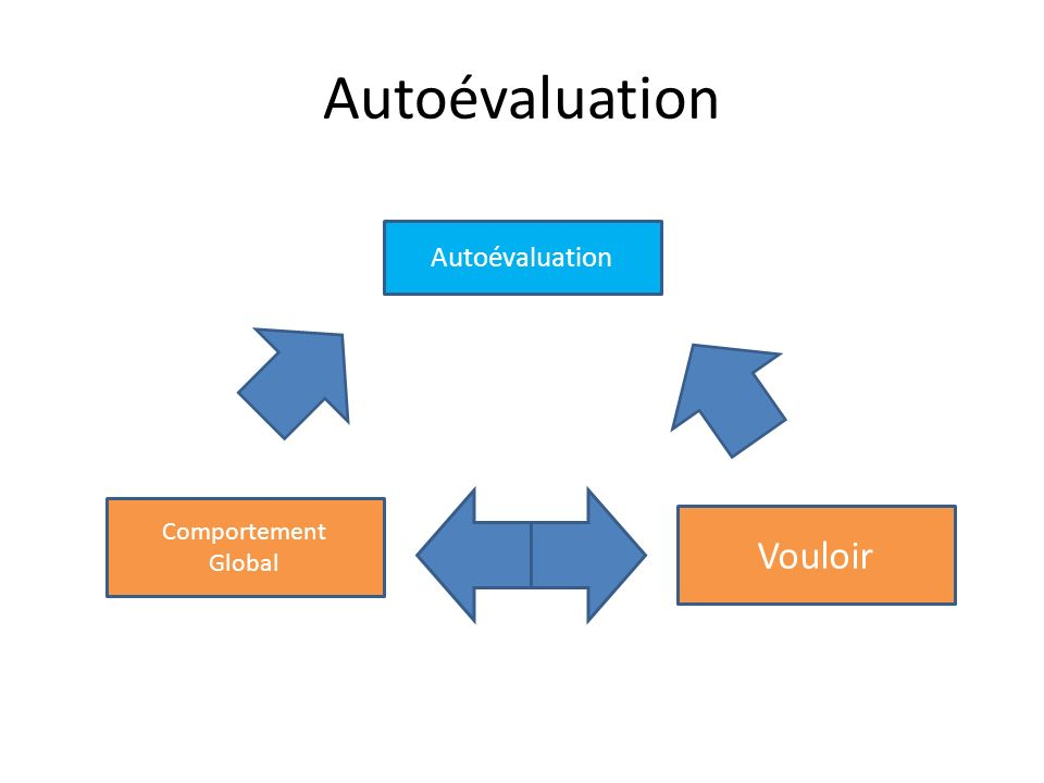 Autoévaluation Autoévaluation Comportement Global Vouloir