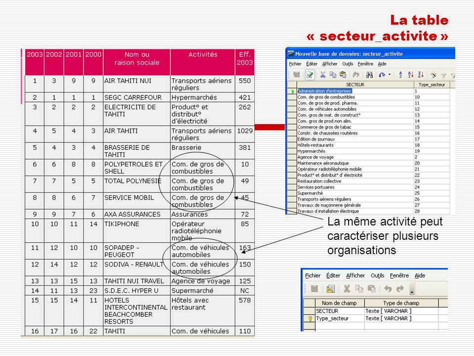 La table « secteur_activite »