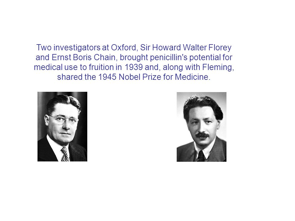 Two investigators at Oxford, Sir Howard Walter Florey and Ernst Boris Chain, brought penicillin s potential for medical use to fruition in 1939 and, along with Fleming, shared the 1945 Nobel Prize for Medicine.
