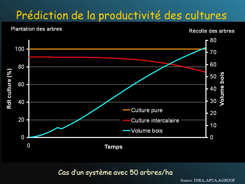 Prédiction de la productivité des cultures