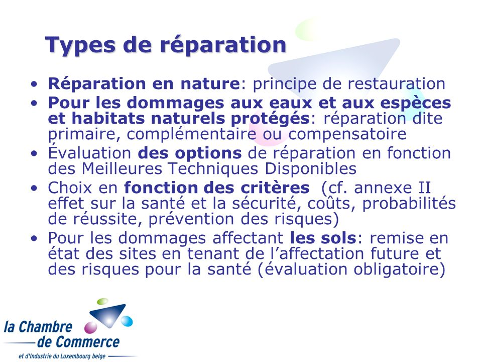 Types de réparation Réparation en nature: principe de restauration
