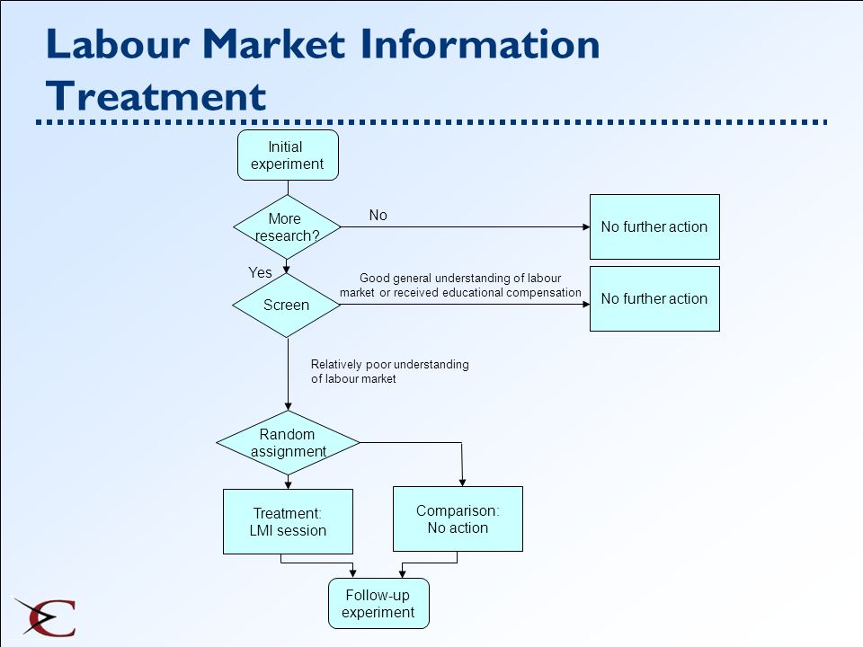 Labour Market Information Treatment